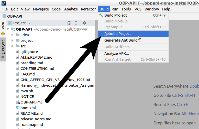 how-to-install-open-banking-api-intelliJ-step-5